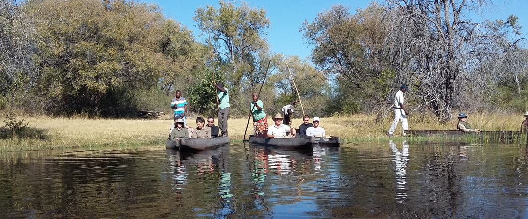 This photo was taken on one of our okavango delta tours, it is clients sitting in their mokoros, a mode of transport in the okavango delta